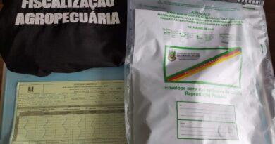 RS registra primeiros casos de recebimento de pacotes misteriosos do exterior