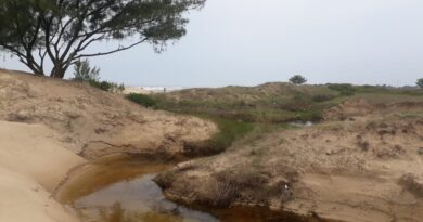 Idoso que estava desaparecido é encontrado dentro de valo em Capão da Canoa